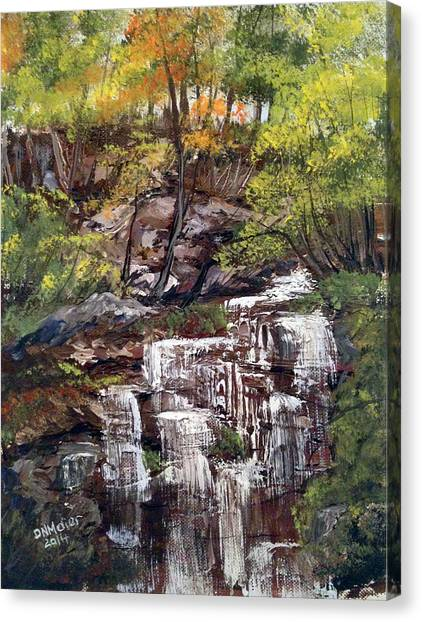 Nice Waterfall In The Forest Canvas Print