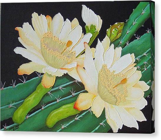 Night Blooming Cacti Canvas Print by Carol Sabo