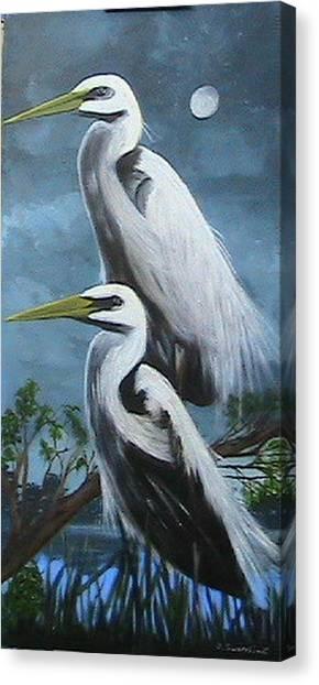 Night Egrets Canvas Print
