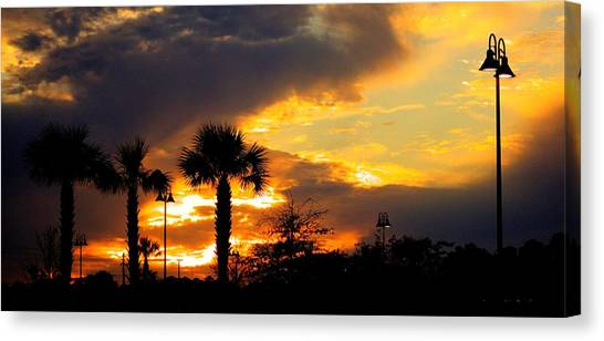 Night Fury Canvas Print