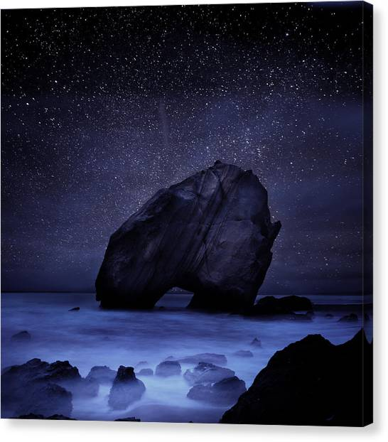 Night Guardian Canvas Print
