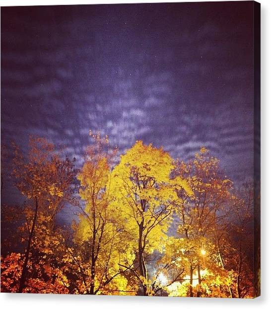 Starry Night Canvas Print - #night #longexposure by Marija Markule