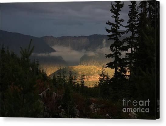 Night On Cougar Mountain Series Vi Canvas Print
