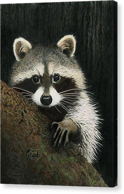 Night Raider Canvas Print