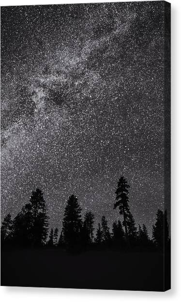 Night Serenity Canvas Print by Nancy Strahinic