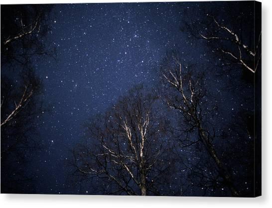 Night Sky Canvas Print by Pekka Parviainen/science Photo Library