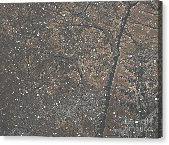 Night Snow Series Bianco Canvas Print