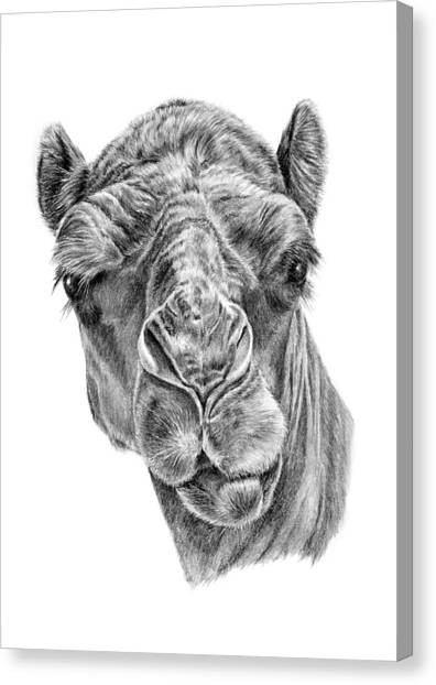 Noble One Canvas Print