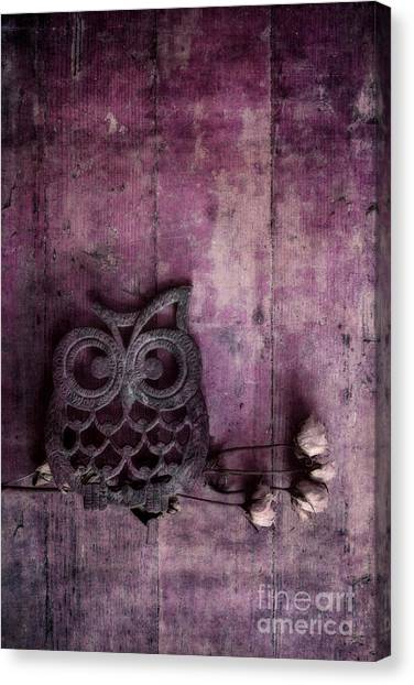 Owls Canvas Print - Nocturnal In Pink by Priska Wettstein