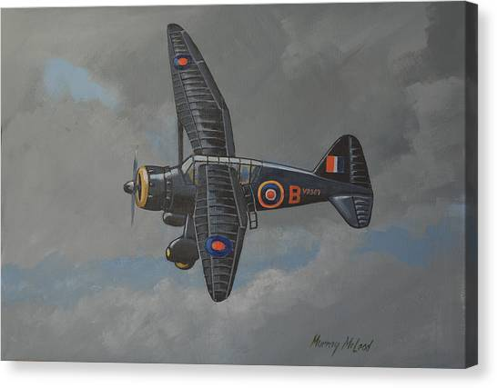 Nocturnal Lysander Canvas Print