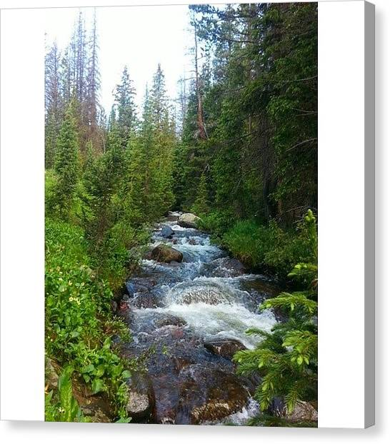 Fly Fishing Canvas Print - High Mountain Fly Fishing  by Brittany  Springer