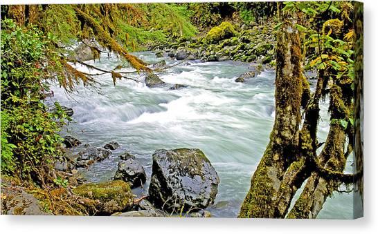Nooksack River Rapids Washington State Canvas Print