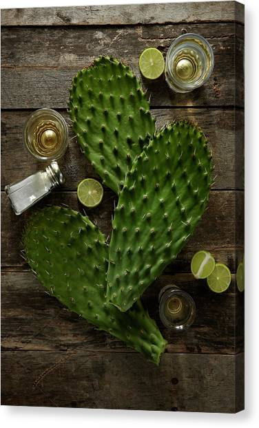 Nopales And Tequila Canvas Print