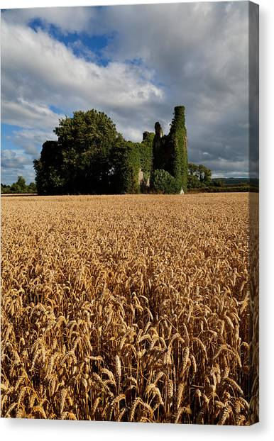 Waterford Canvas Print - Norrisland Castle, County Waterford by Panoramic Images