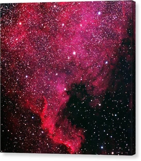North American Nebula Canvas Print