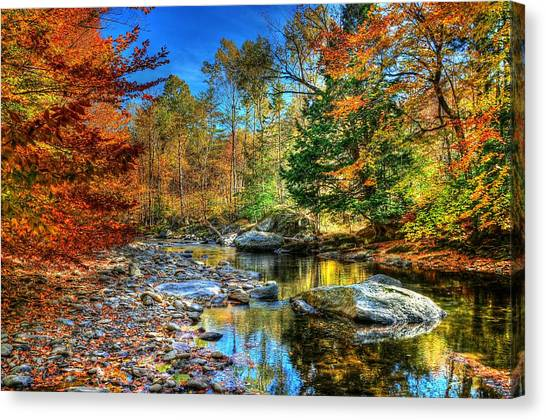 North Branch In Fall Canvas Print