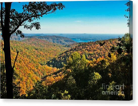 North Carolina Fall Foliage Canvas Print