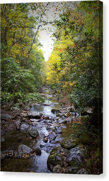 North Carolina Typical Canvas Print