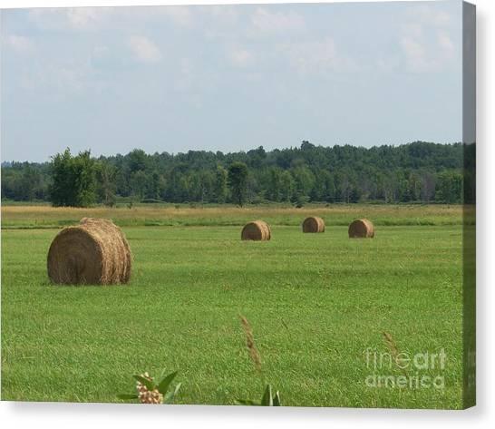 North Country Haystacks Canvas Print by Kevin Croitz
