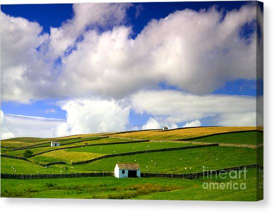 North Pennines Barns In Landscape Canvas Print