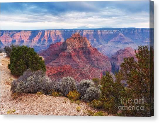 North Rim Canvas Print - North Rim Grand Canyon Arizona Desert Southwest Solitude At Cape Royal by Silvio Ligutti