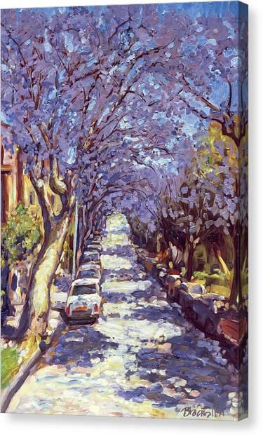 Light Paint Canvas Print - North Sydney Jacaranda by Ted Blackall