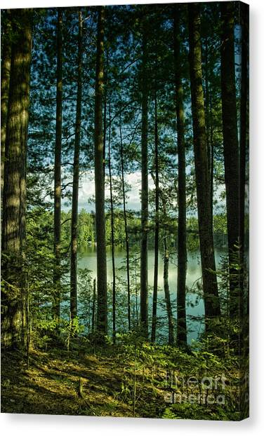 North Woods Lake Canvas Print