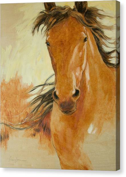 Draft Horses Canvas Print - Northbound by Tracie Thompson