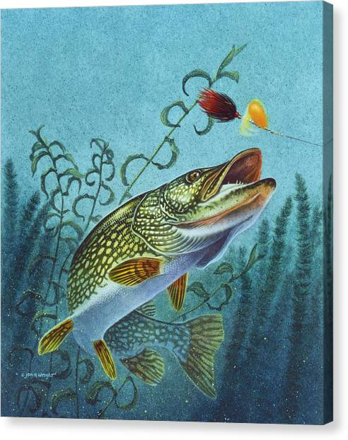Angling Canvas Print - Northern Pike Spinner Bait by JQ Licensing