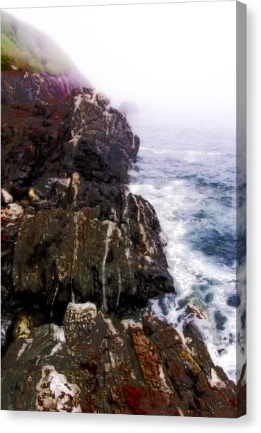 Northwest Coast-1 Canvas Print