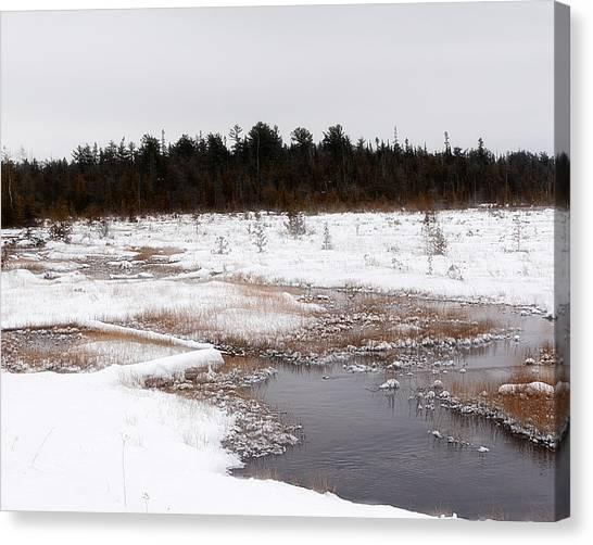 Norwegian Creek Canvas Print