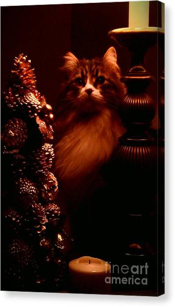 Not A Creature Was Stirring... Canvas Print