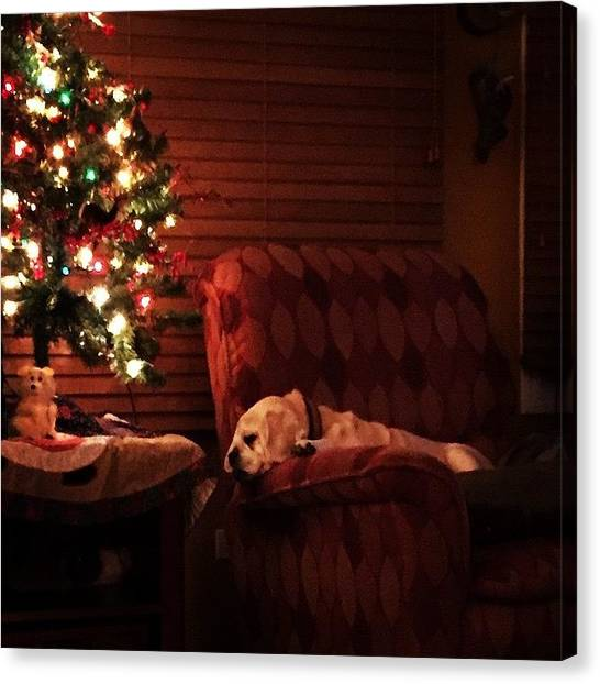 Pugs Canvas Print - Not A Creature Was Stirring... #pug by Susan Rooney Hanley