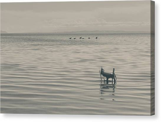 Desolation Canvas Print - Not All Endings Are Happy by Laurie Search