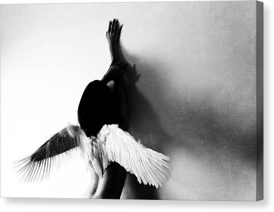 Not Fly Canvas Print by Keisuke Ikeda @