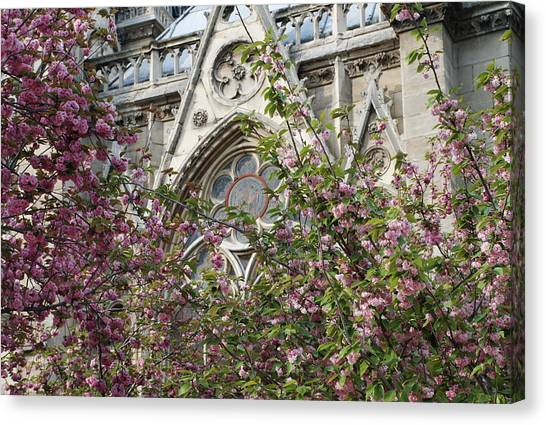 Notre Dame In April Canvas Print