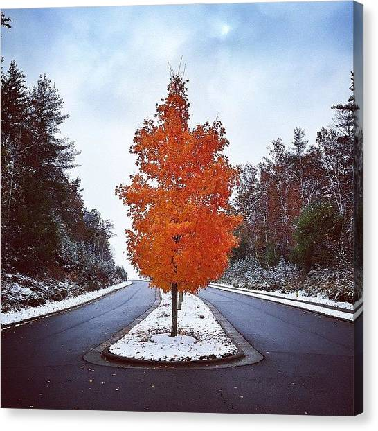 Appalachian Mountains Canvas Print - November 1st by Simon Nauert