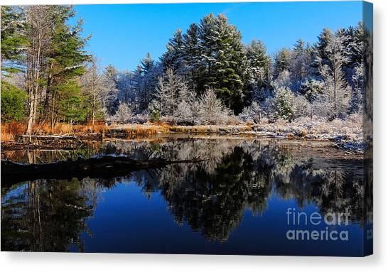 November Snow Canvas Print
