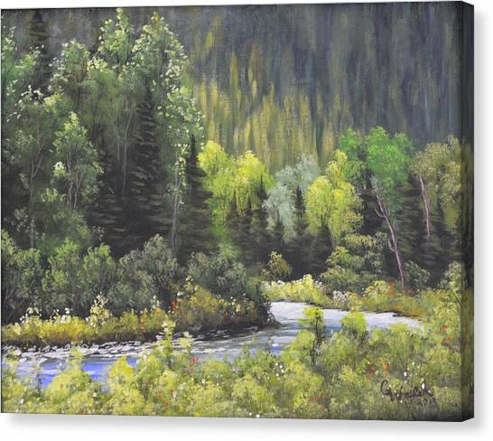 Nw Branch Old Man River Canvas Print