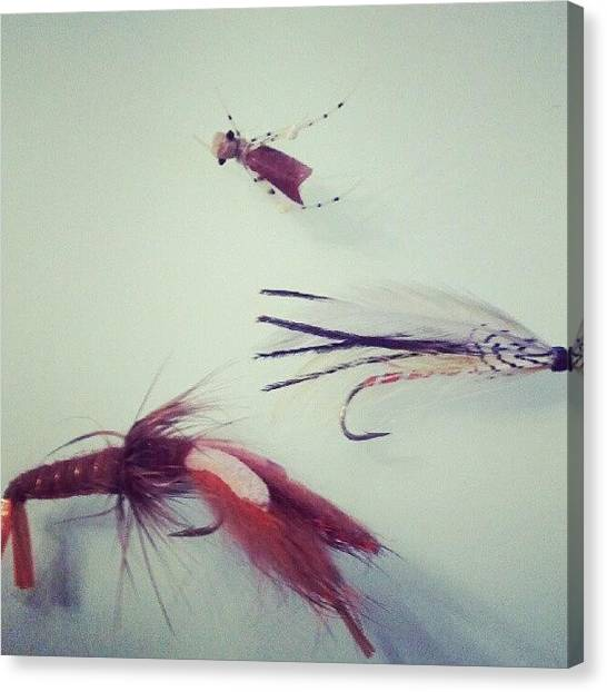 Fly Fishing Canvas Print - Nymphs by Erin E Murphy HouseOnHudson