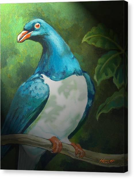 Nz Native Pigeon Kereru Canvas Print by Patricia Howitt