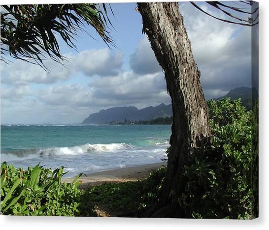 Oahu Coastline Canvas Print