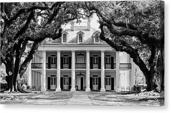 Oak Alley Mansion Black And White Canvas Print