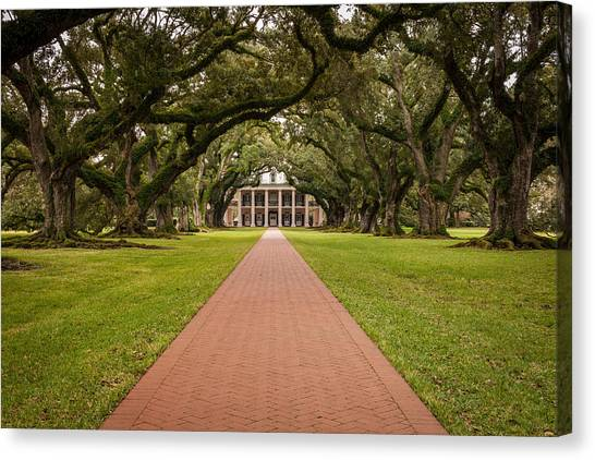 Oak Alley Plantation Canvas Print