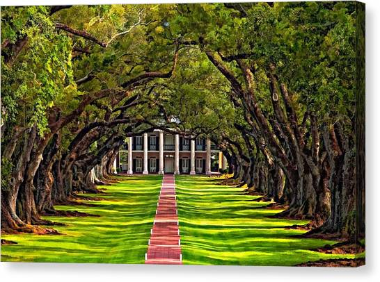 Mississippi River Canvas Print - Oak Alley by Steve Harrington