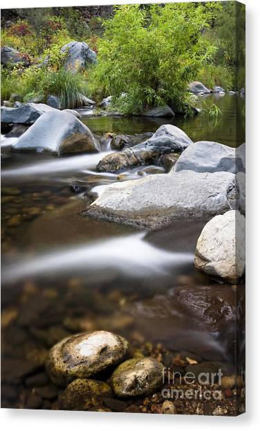 Oak Creek Flowing Canvas Print