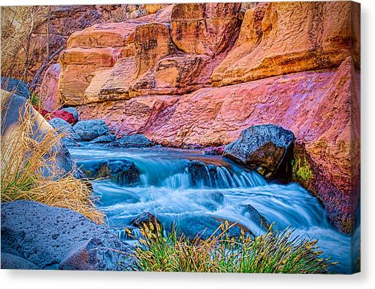 Oak Creek In The Spring Canvas Print