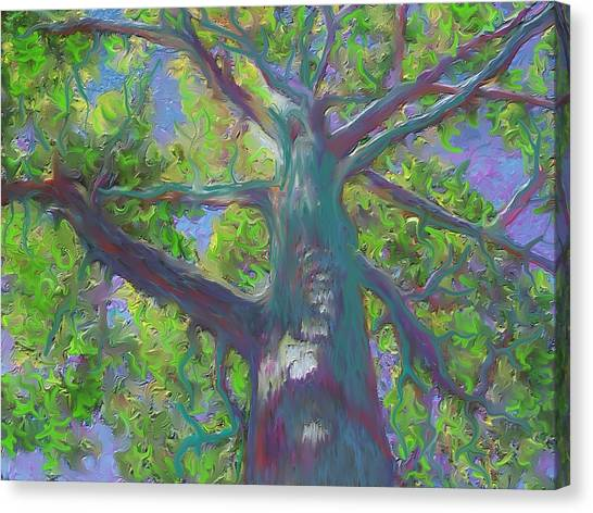Oak Tree 1 Canvas Print