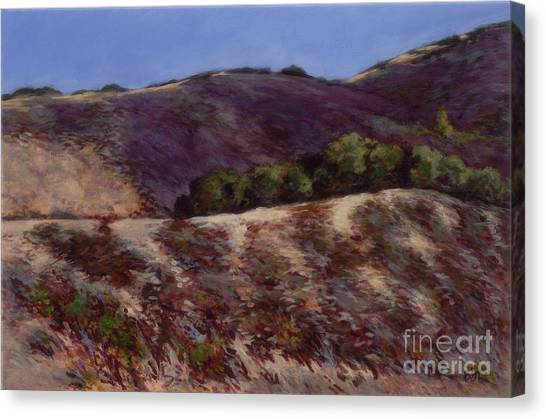 Oaks On A Hillside Canvas Print