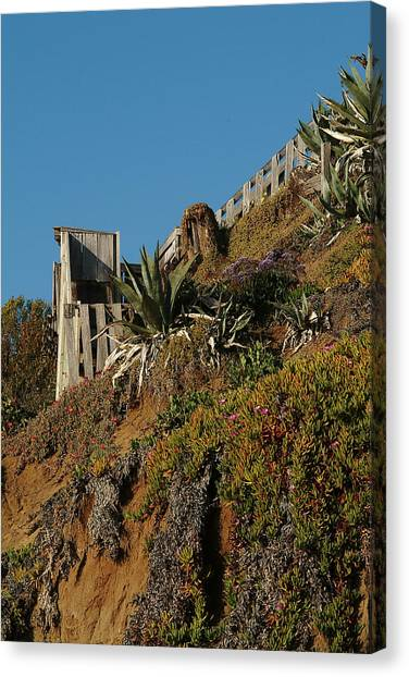 Ocean Beach Hillside Canvas Print